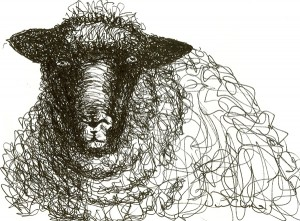 sheep2-after-H-Moore-300x221